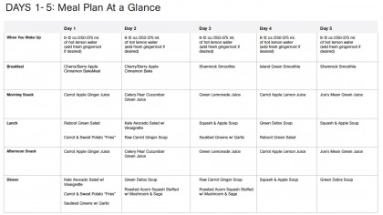 Before and After Photos 5 a day meal planner