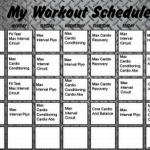 Download Insanity Workout Schedule | Printable PDF