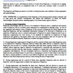 Download Non-Compete Agreement Templates | Disclosure ...