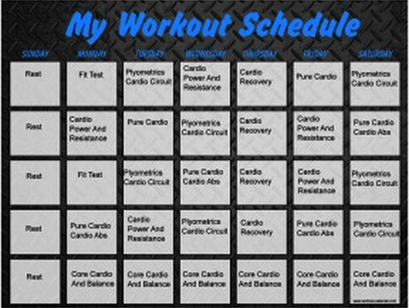 Download Insanity Workout Schedule | Printable PDF ...